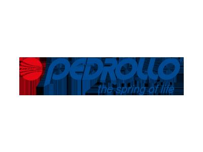 pedrollo-trattamento-acque-elettropompe-frosinone-cassino-erreclima